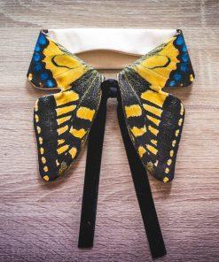 col papillon jaune et noir