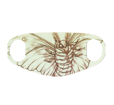 masque papillon de nuit